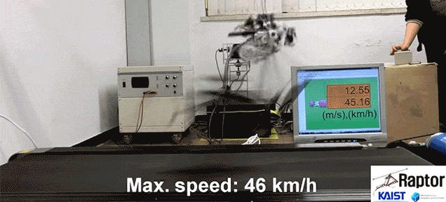 This Terrifying Robo-Raptor Will Hunt You Down at 29 MPH