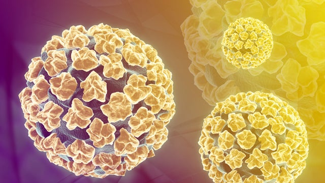 Women Can Effectively Test Themselves For HPV