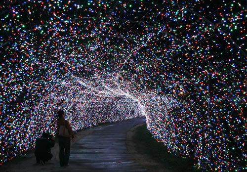 4.5 million LEDs Dazzle at Japan Winter Light Show