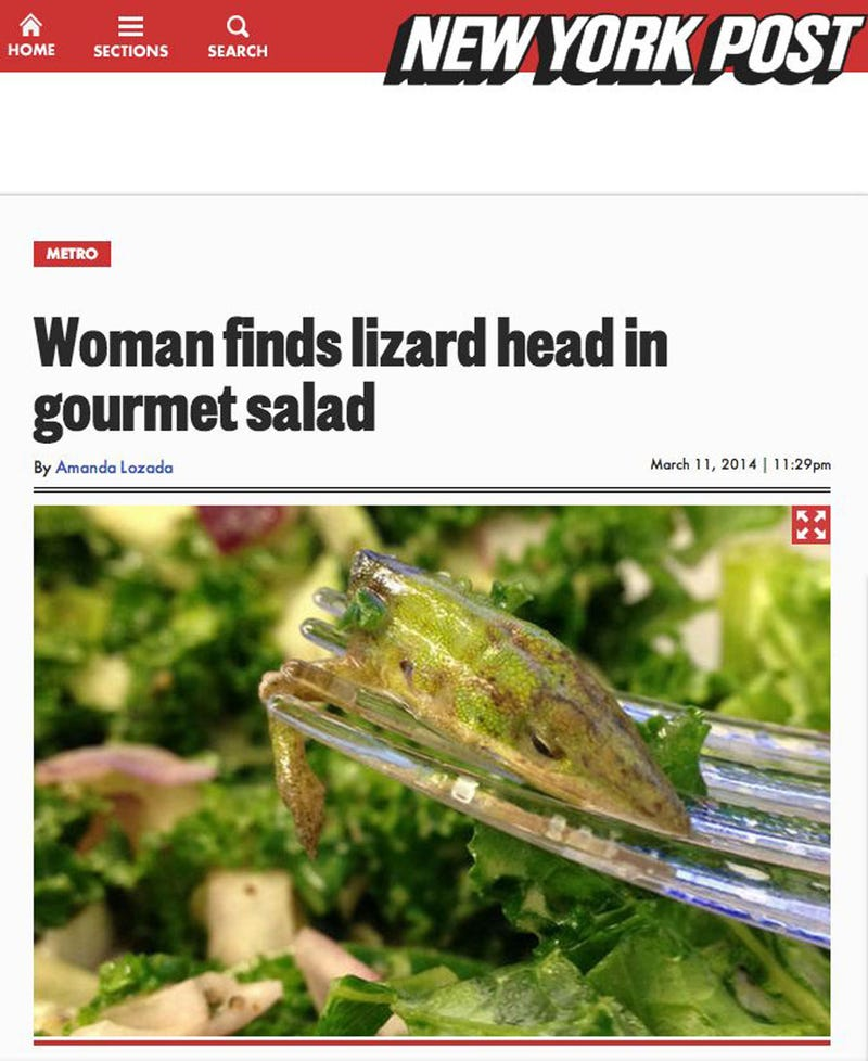I Can't Stop Staring at This Lizard Head a Woman Found in Her Salad