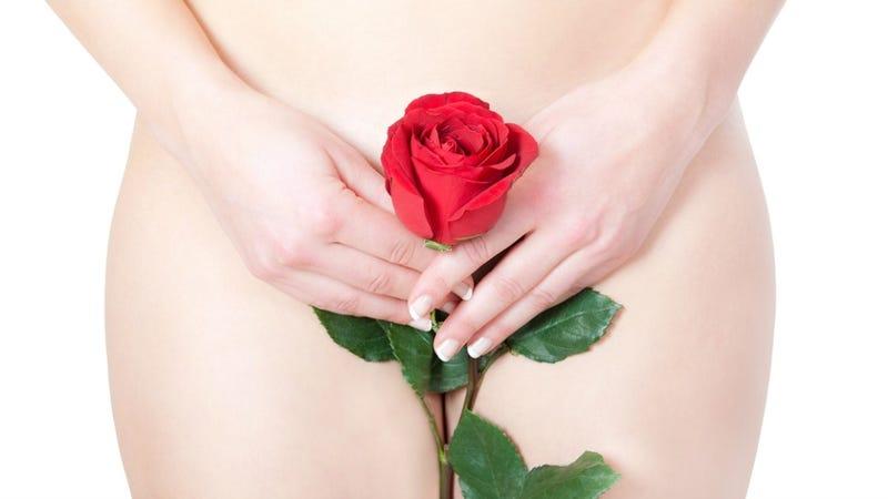 Go Figure: Plastic Surgery Websites Are Creepy, Vague About Designer Vagina Procedures