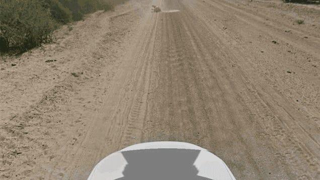 Google Street View Car Not Guilty of Donkey Murder