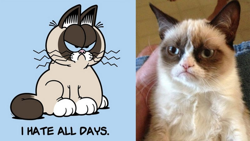 Grumpy Cat Signs Movie Deal, Will Be the Next Garfield