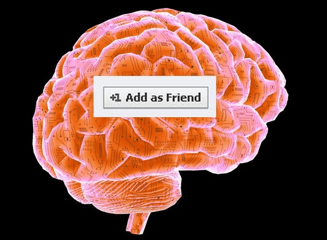 How Your Brain Helps You Make Friends
