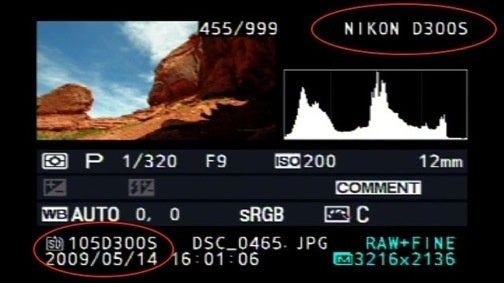 Hey Look, It's the LCD Screen on the Back of a Nikon D300s DSLR