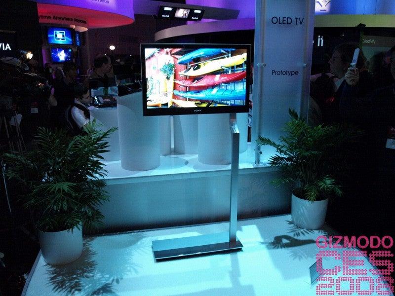 Sony 27-inch OLED Prototype Gallery