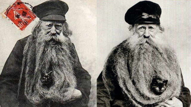 Using your 11-foot-beard as a nest for cats is history's great unsung fashion trend