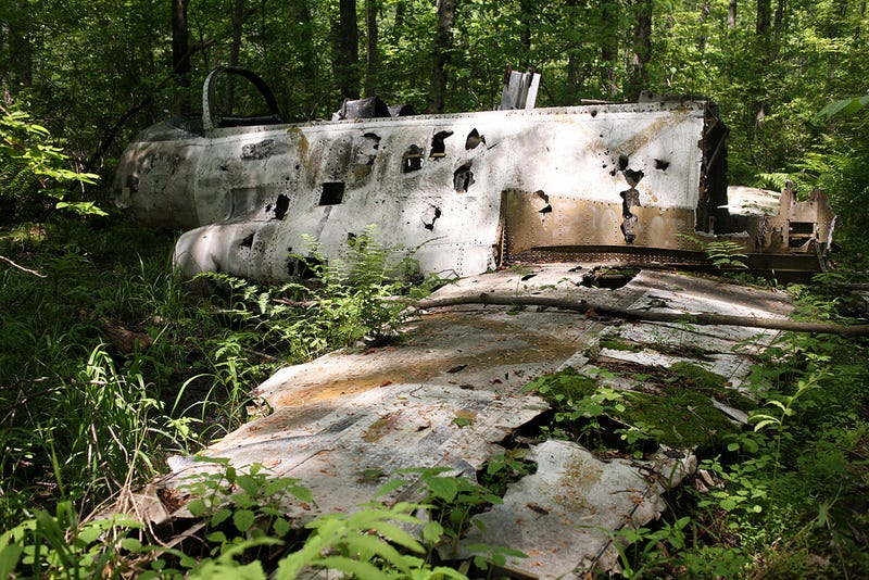 Visit a crashed military jet in the woods of New Jersey