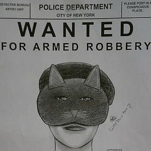 Catwoman Goes On New York Robbery Spree
