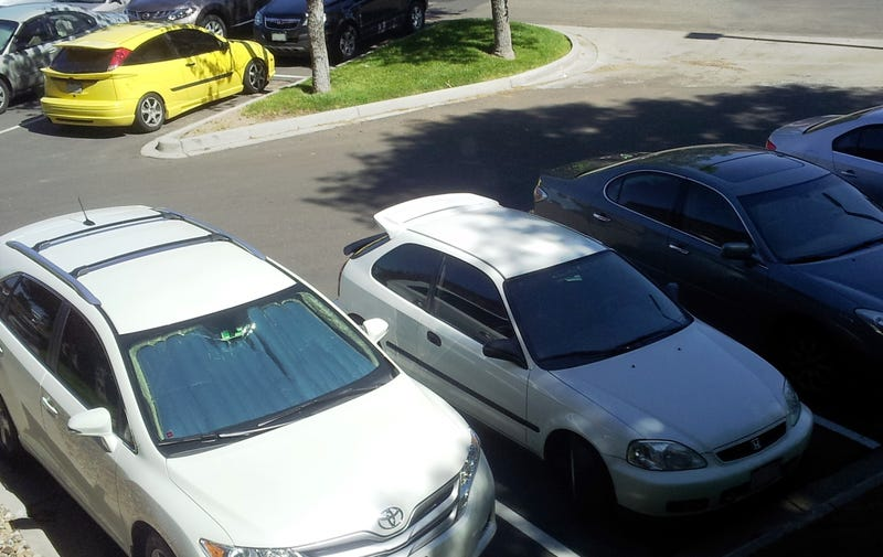 Ricers, ricers everywhere!