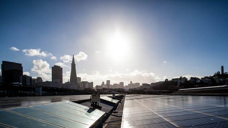 Exploratorium Reborn: Inside San Francisco's New Innovation Shrine