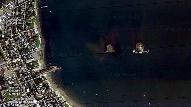 Bronx Man Pays $160K for Uninhabitable Island in His Backyard