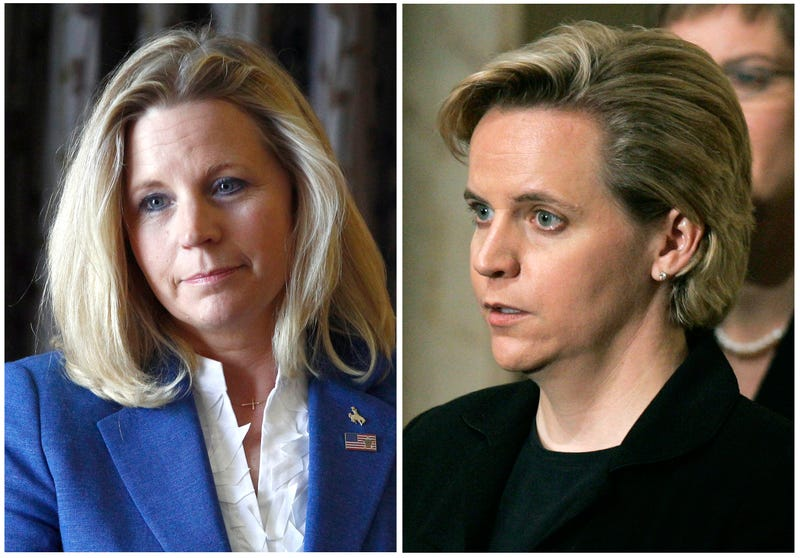 "Liz Cheney's Gay Sister: ""I'm Not Supporting Liz's Candidacy"""