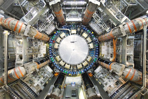 Bird-Related Accident Suggests the Large Hadron Collider Really Is Doomed