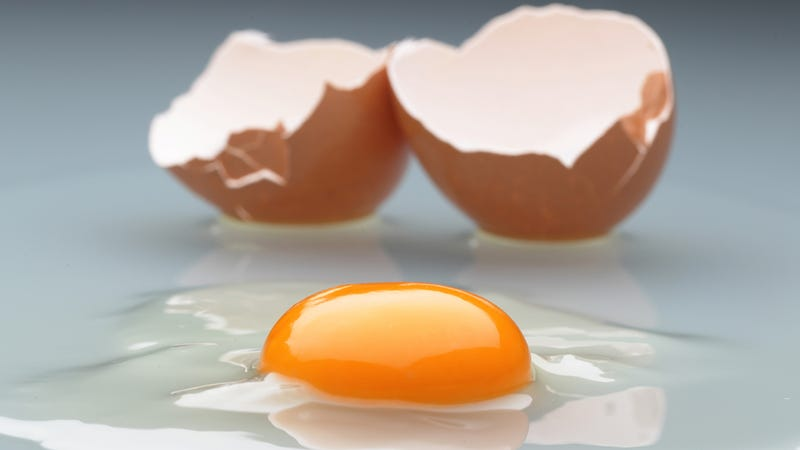 In the Future, Humans Will Be Able to Eat Eggs