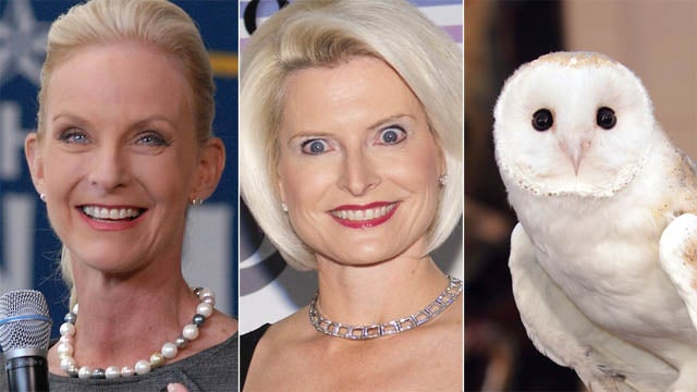 There's Something Familiar About Callista Gingrich