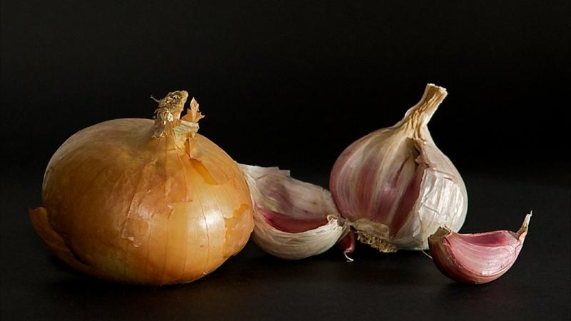 Can Cats Eat Garlic Aspca