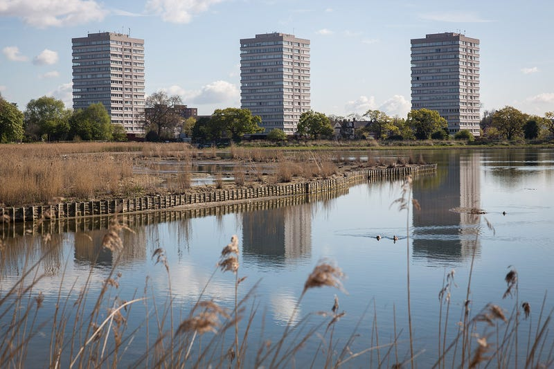 Every Metropolis Should Have a Wildlife Reserve Like This