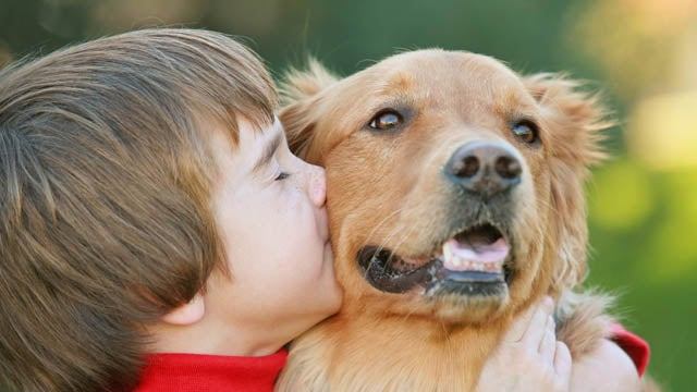 Playing With A Furry Pet Reduces Kids' Allergy Risk
