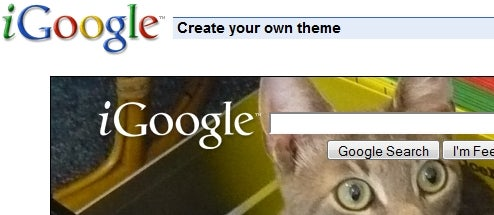 ThemeMaker Puts Custom Pics and Colors on Your iGoogle Start Page