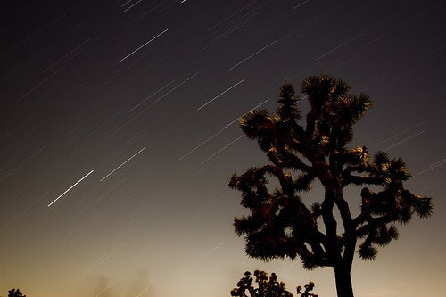 Everyone's Second-Favorite Meteor Shower Peaks Tonight