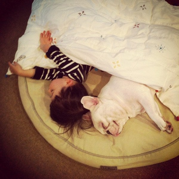 These Photos of an Adorable Little Boy and His French Bulldog Buddy Single-Handedly Justify the Existence of Instagram