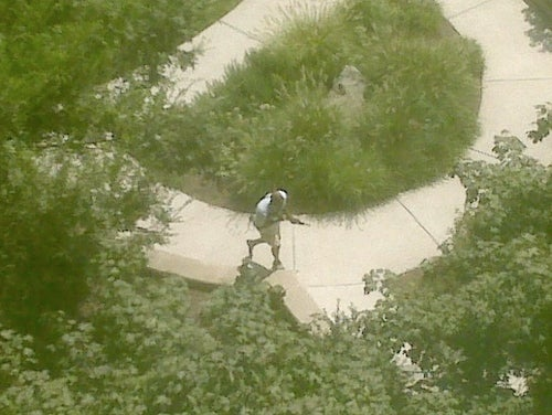 Hostage Situation at Discovery Channel Headquarters (Updated)