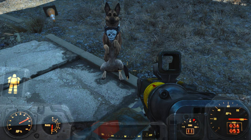 How To Build Doghouse Fallout