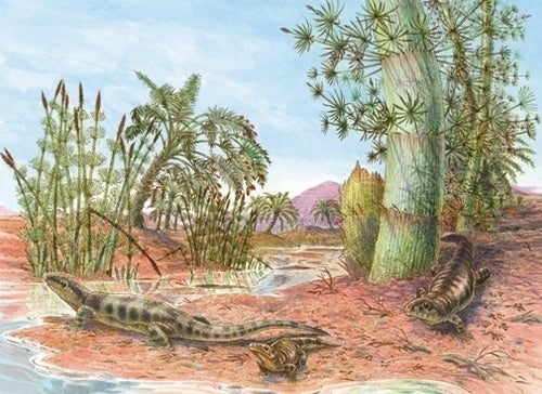 Meet the 300 million-year-old reptile who truly conquered the land