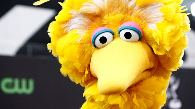 'Sexy Big Bird' Is This Year's Hottest Halloween Costume