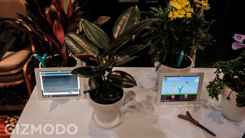 Growing Plants Just Got A Lot Smarter with Parrot's Flower Power