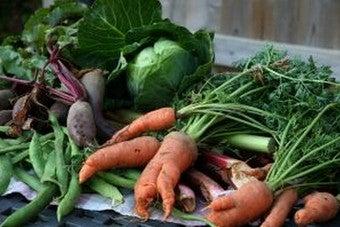 Maximize Savings in a Small Garden by Selecting Profitable Plants