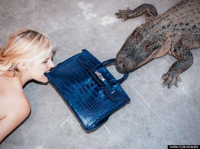 Here Is a Video of a Man Feeding a $100,000 Birkin Bag to an Alligator