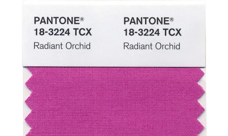 The 2014 Color of the Year Assaults Eyeballs Everywhere