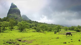 """The Western Ghats of India, a UNESCO World Heritage Site, noted to be older than the Himalayas. It's """"geomorphic features of immense importance with unique biophysical and ecological processes"""" and it is considered a significant biodiversity hotspot."""