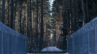 Like an Evil Witch, CIA Tortured Prisoners in Polish Forest
