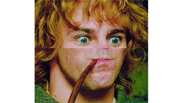Cut Off Some Noses And Lord Of The Rings Gets Funnier