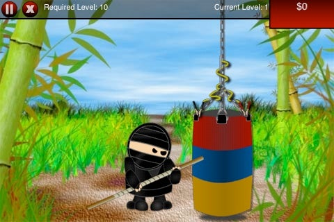 Grab the Ask a Ninja iPhone Game Now