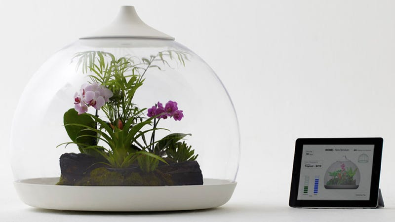 Now you can control plants with your iPhone
