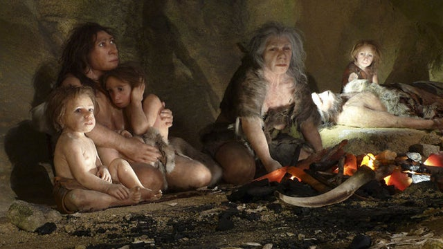 New evidence shows that Neanderthals understood the medicinal value of certain foods
