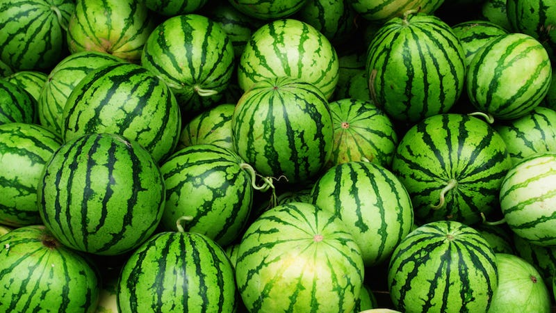 Drug Cartel Busted Using Fake Watermelons to Smuggle Weed Into U.S