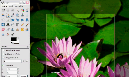 Five Best Image Editing Tools