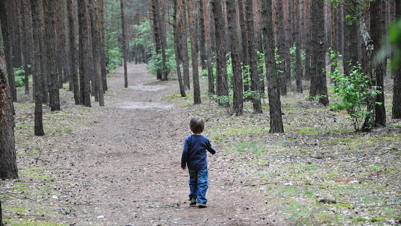 Should We Really Be Tracking Our Children Like Wildlife?