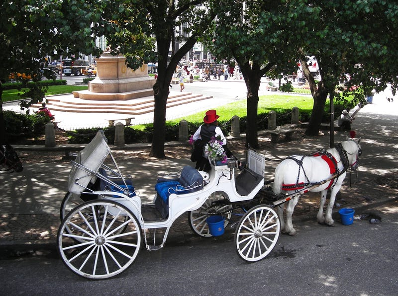 War On Jingle Bells: Bill de Blasio Ending NYC's Horse-Drawn Carriages