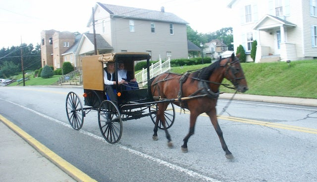 Drive-By Shooting Kills Horse Pulling Amish Buggy