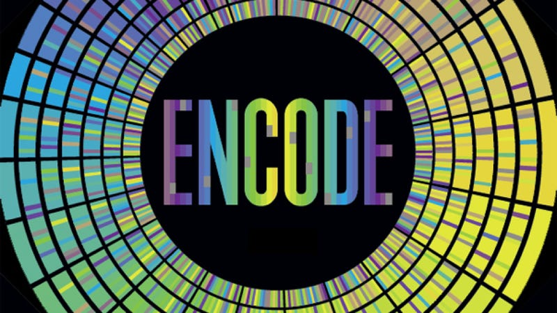 A masterful introduction to ENCODE, one of the most impressive genome projects of our time