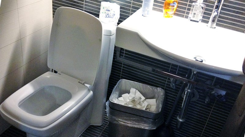 The Poop Prisoner's Dilemma: What Do You Do with an Unflushed Toilet?