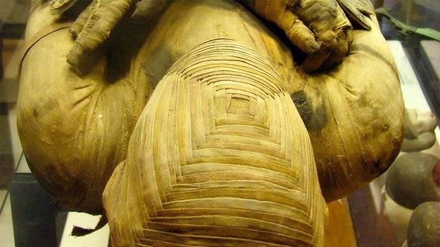 Terminally Ill Man Mummified For New Reality Show