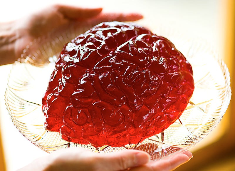 What would it really feel like to touch a human brain?