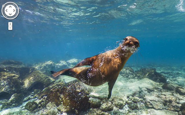 You Can Now Explore the Galapagos Islands With Google Street View